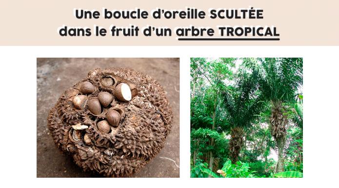 boucles d'oreille en ivoire végétal par Mazonia