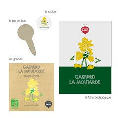 Mini-kit de semis - graines de moutarde bio - Gaspard la moutarde