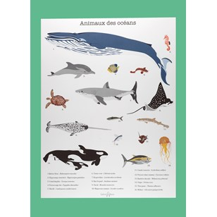 Affiche animaux A3