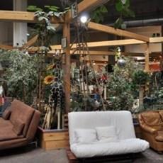 emma s d fi la friperie solidaire dream act. Black Bedroom Furniture Sets. Home Design Ideas